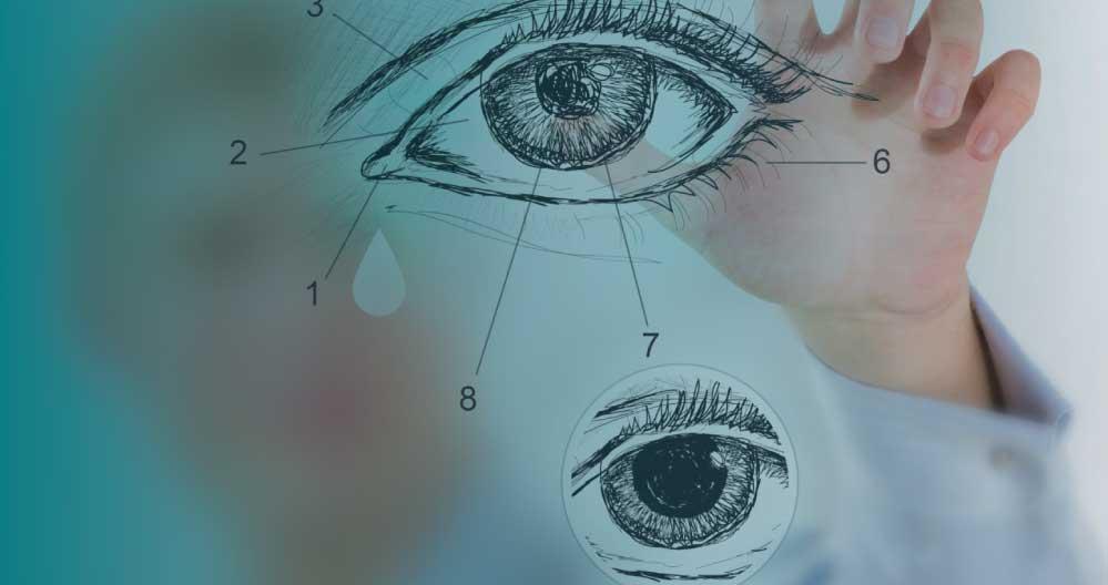 optometrist lubbock